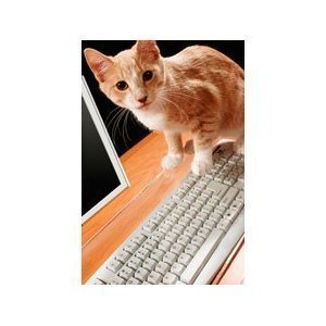 Catproof Computer Keyboard Cover