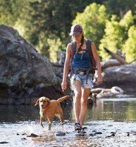 Tuff Mutt Hands Free Dog Leash for Running, Walking, Hiking