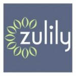 12 Interesting Zulily Facts and Statistics (August 2018)