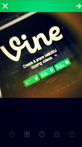 Vine statistics facts