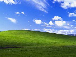 Microsoft Windows Statistics and Facts