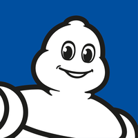 Michelin Statistics revenue totals and Facts