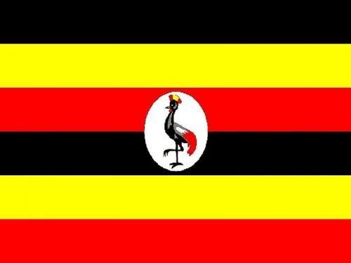 Uganda Statistics and Facts