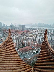 Wuhan Statistics and Facts