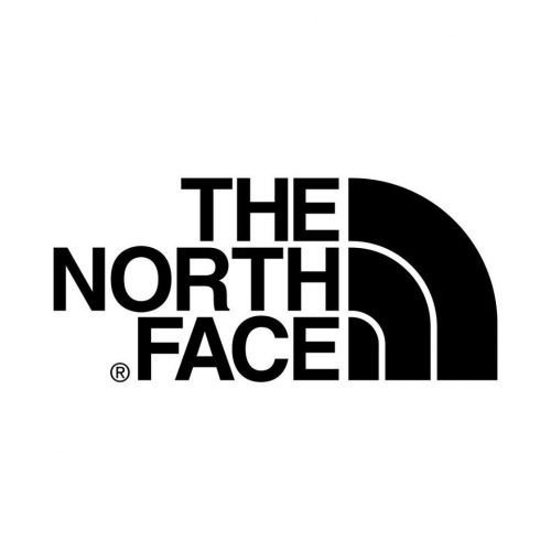 The North Face statistics store count and facts