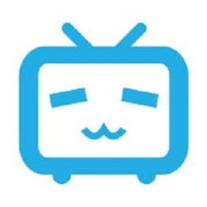 Bilibili Statistics and Facts