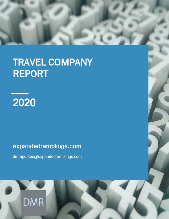 Travel Company Report 2020 Cover
