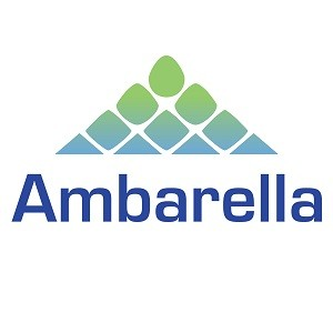 Ambarella Statistics and Facts