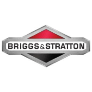 Briggs & Stratton statistics and facts