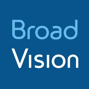 BroadVision Statistics and Facts