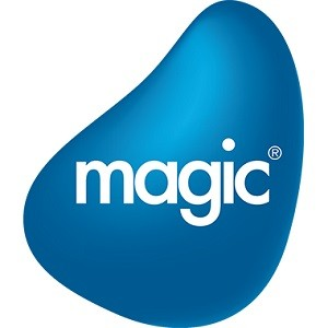 Magic Software statistics and facts