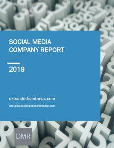 Social Media company Report